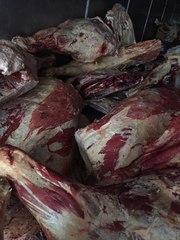 Мясо (Говядина,  Свинина,  Баранина) оптом от производителя.
